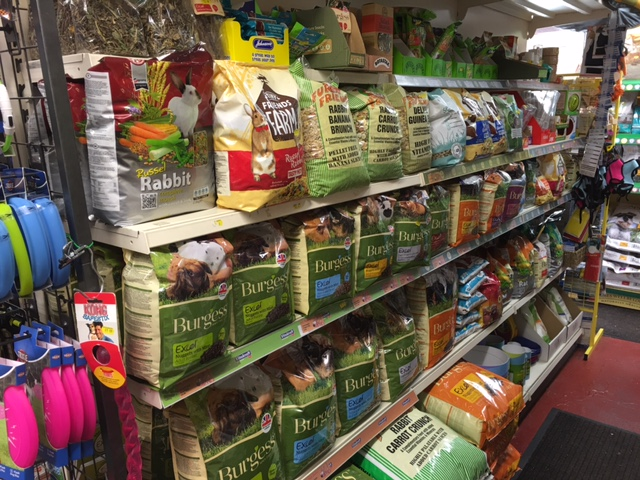 All the small animal food and treats you will ever need