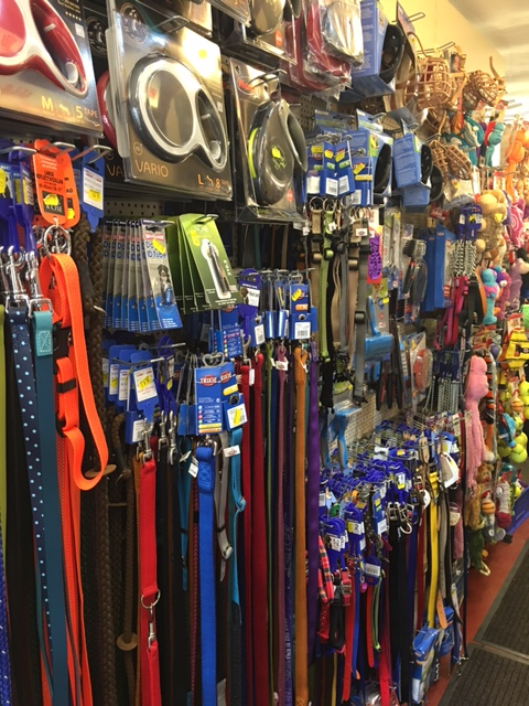 collars leads and toys
